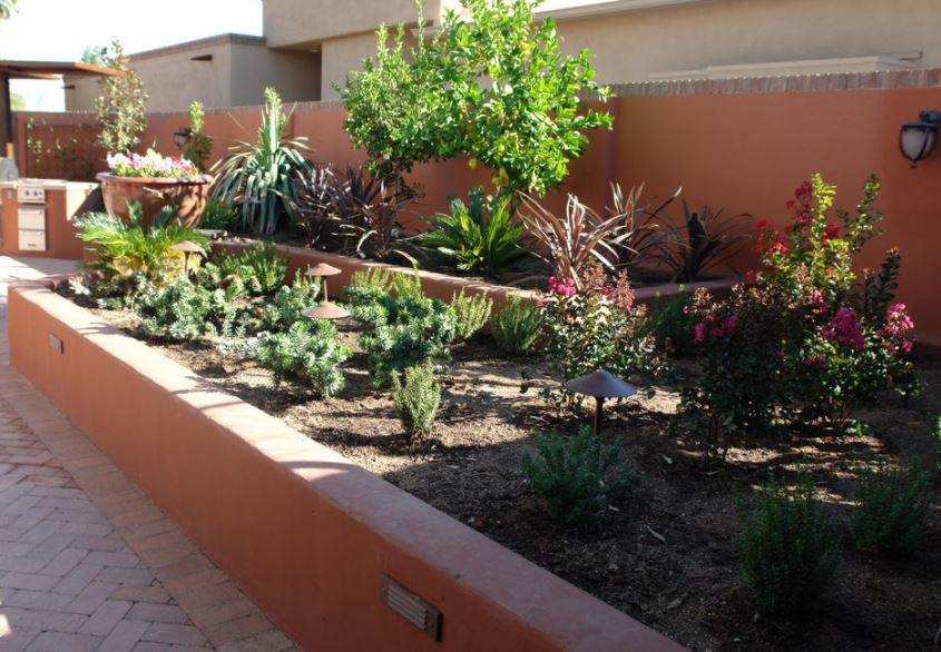 garden design in arizona