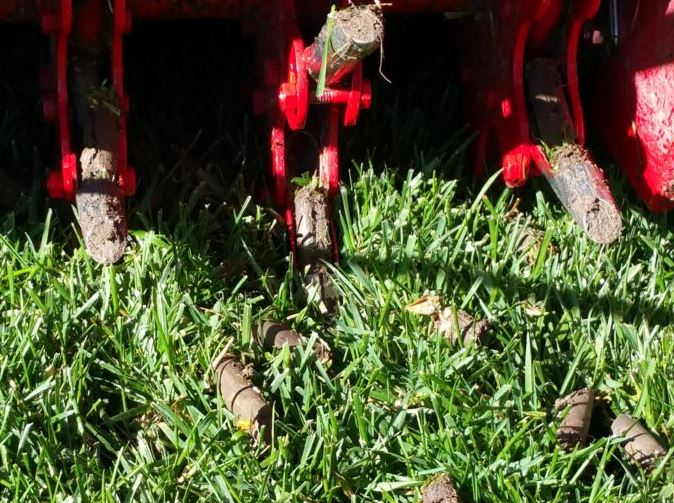 lawn aeration queen creek